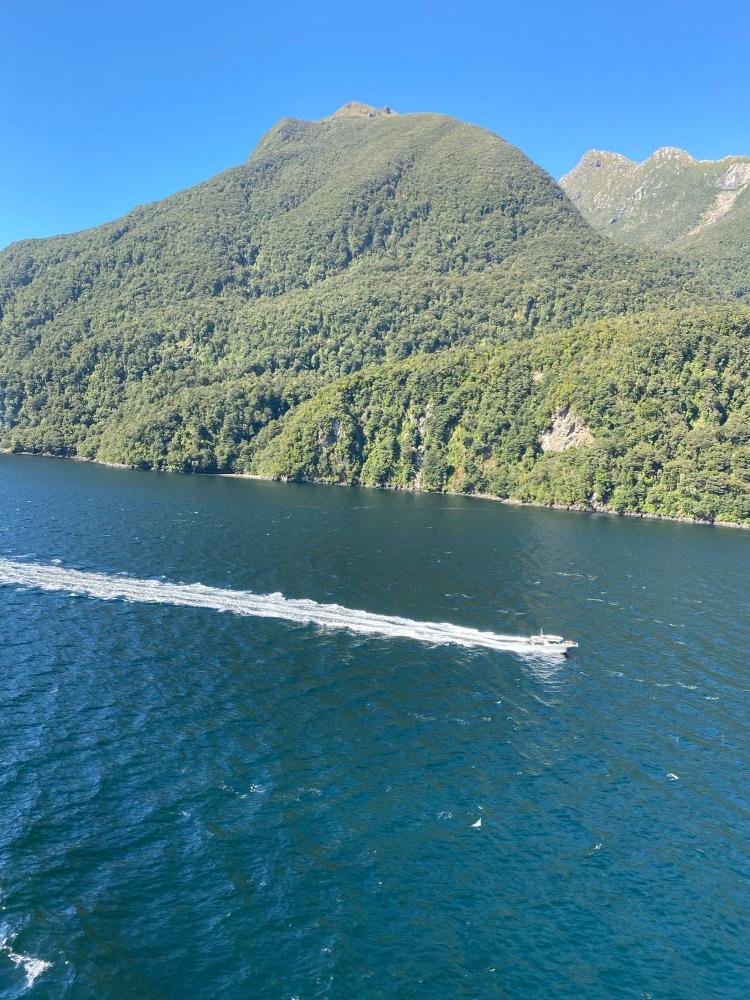 Sailing through Dusky Sound