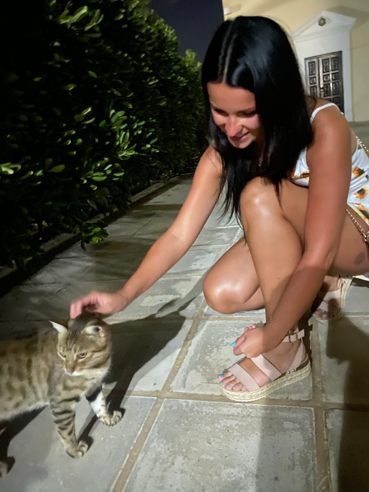 Playing with the local cats
