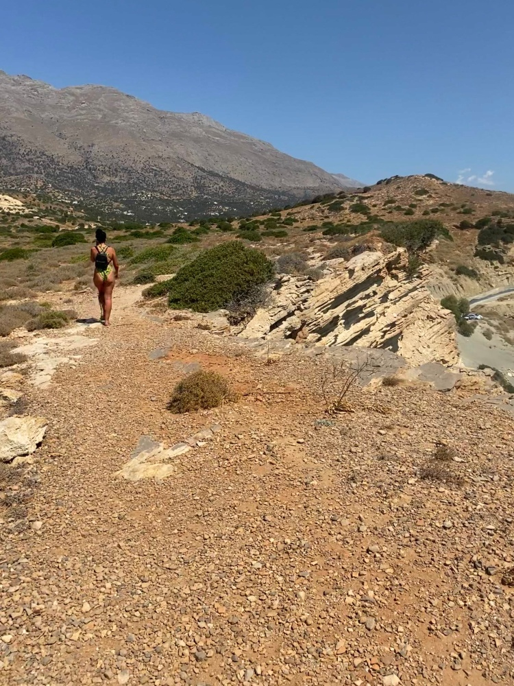 walking through the oregano